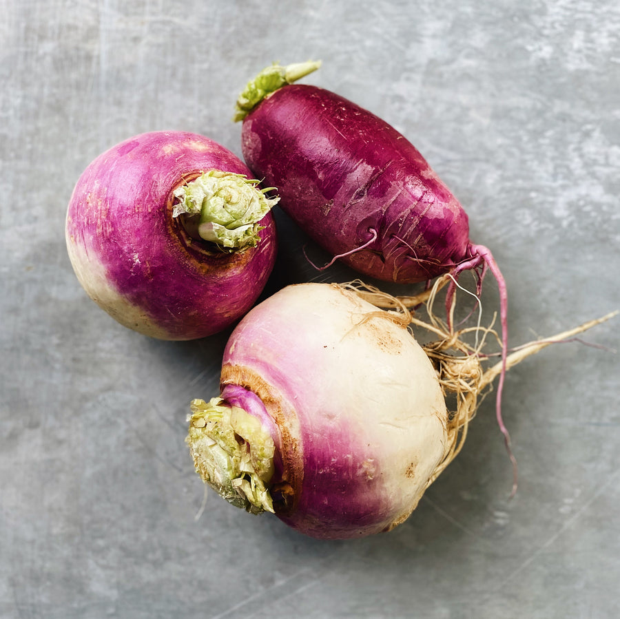 North Arm Farm Purple Top Turnips