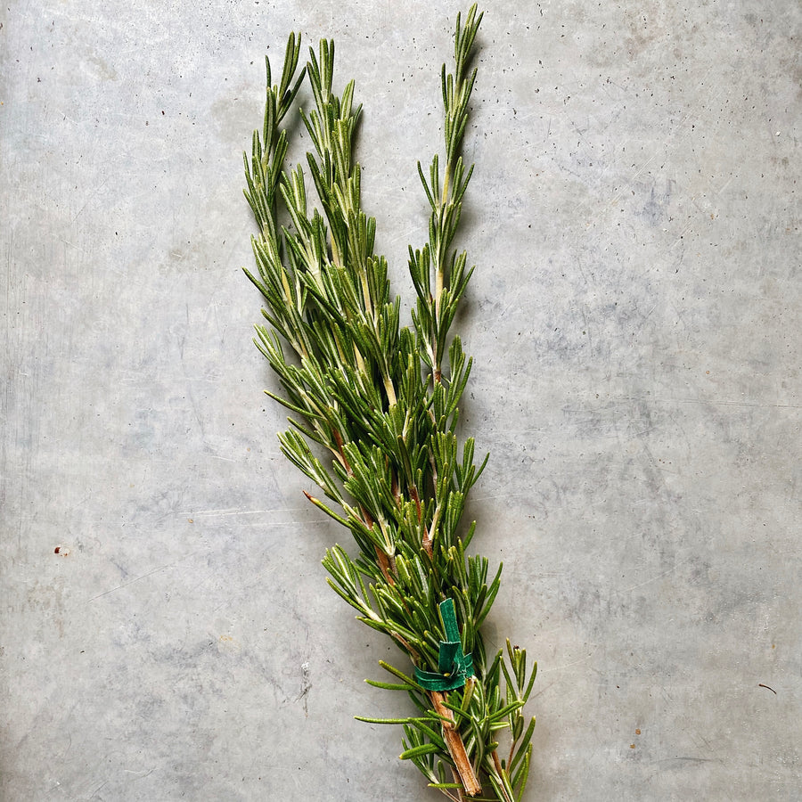 Organic Rosemary Bunch
