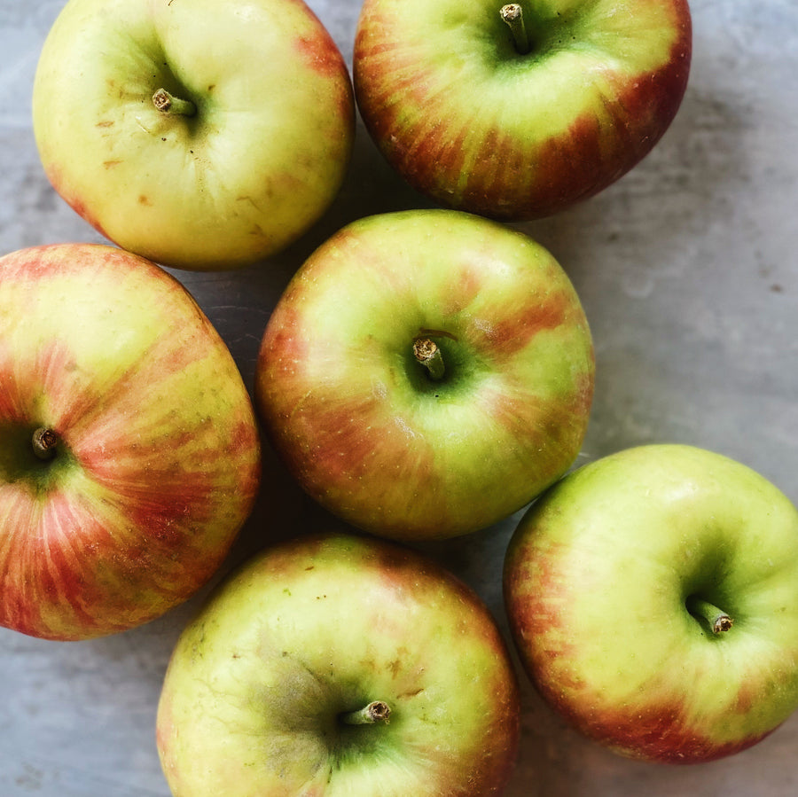6 Pack Honeycrisp Apples