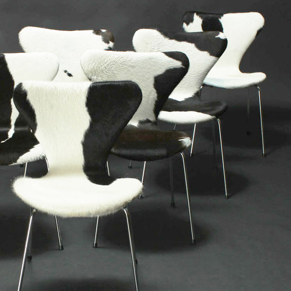 Vintage Jacobsen cowhide chairs