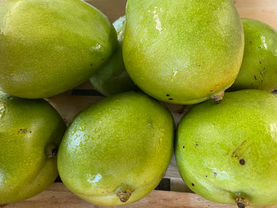Organic Mangos - Square Farm Shop