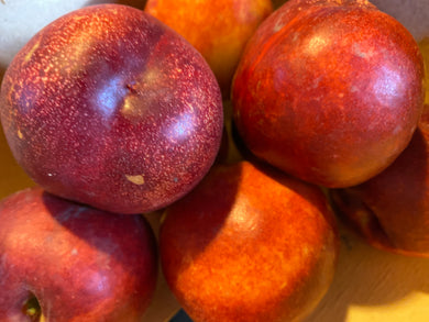 Organic Nectarines - Square Farm Shop