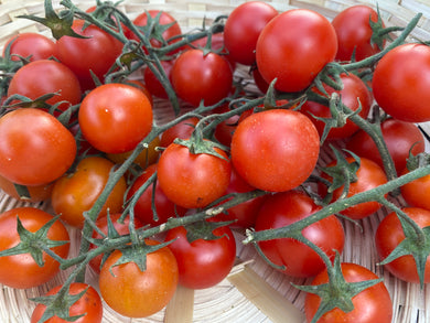 Organic Tomatoes - Cherry - Square Farm Shop