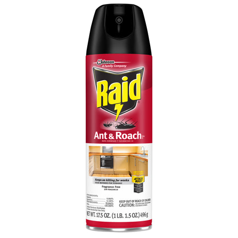 Raid Unscented Case Pack 12