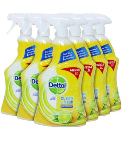 Dettol Fresh Citrus 33.8 oz Case Pack 6