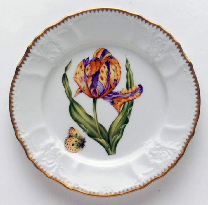 Old Master Tulips Fine China Collection
