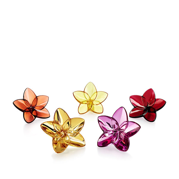 The Bloom Flower Collection - 6 Colors Available