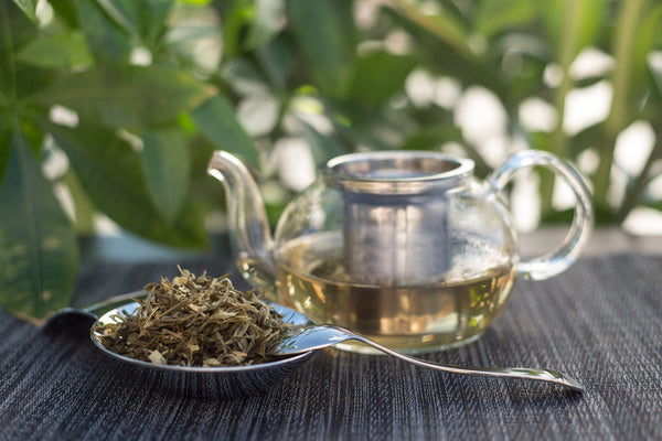 White French Mint Tea