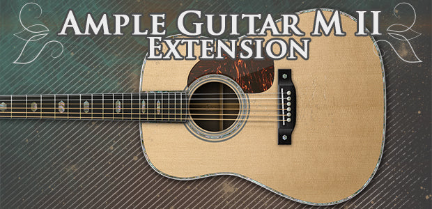 Ample Sound Ample Guitar M Extension Pick
