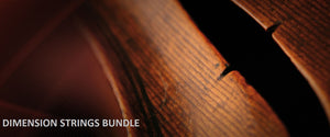 VSL Dimension Strings Bundle