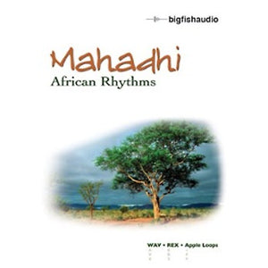 Big Fish Audio Mahadhi - African Rhythms