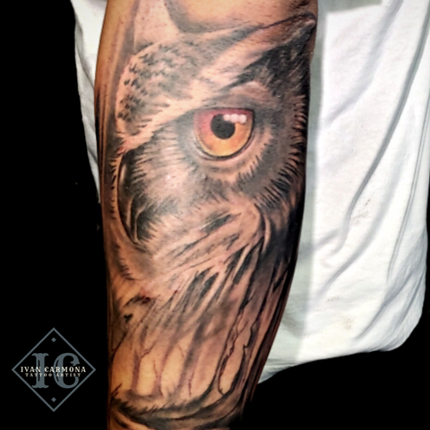 Owl Forearm Tattoo In Black And Gray <p>Buho En Ante Brazo Tatuaje En Negro Y Gris</p>