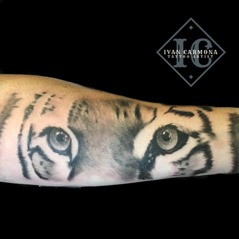 Tiger Portraiture Tattoo From Our Local Zoo On The Arm With Black And Gray Ink Tatuaje De Tigre De Nuestro Zoológico Local En El Brazo Con Tinta Negra Y Gris<br>