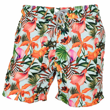 Jardin board shorts  for men Tolu Australia