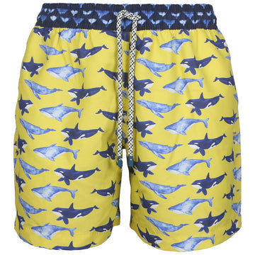 Yellow Whales men boardshorts BALLE30 Tolu Australia