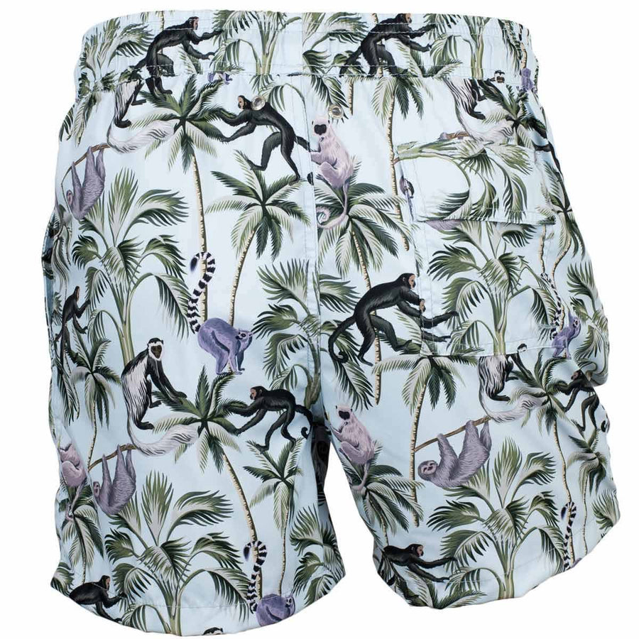 monkeys board shorts tolu australia