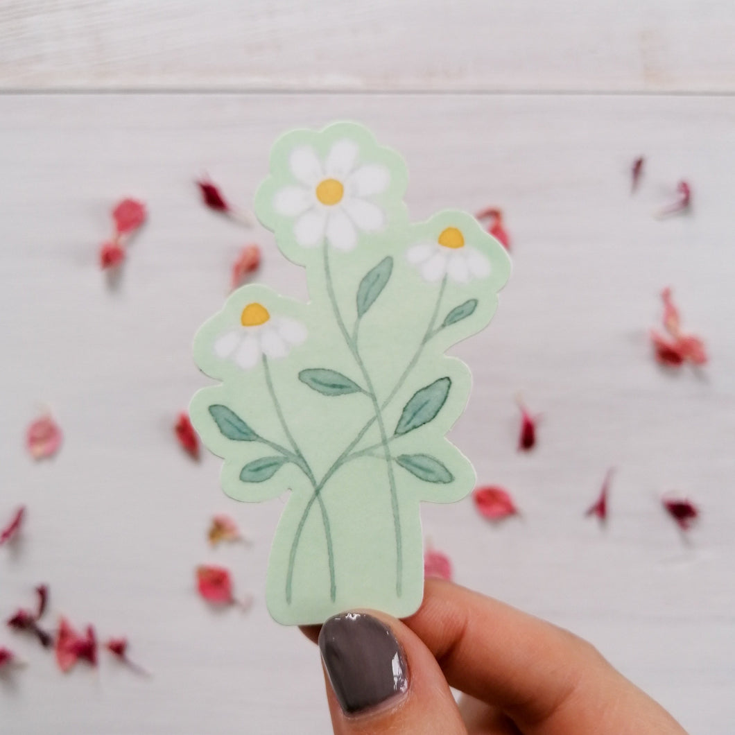 A dainty and pretty hand illustrated sticker of three daisies on a pale green background.
