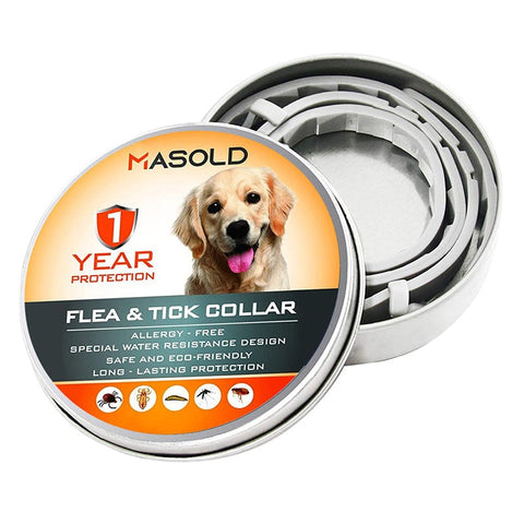 dog flea collar