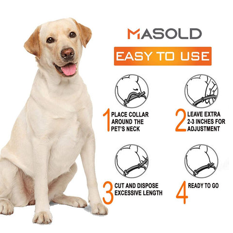 how to use flea collar for dogs