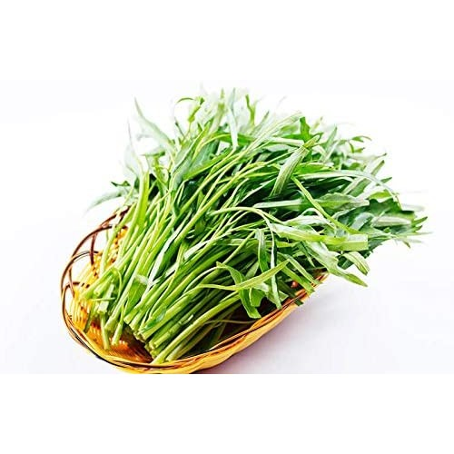 Chinese Water Spinach
