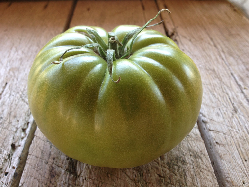 Aunt Ruby's German Green-Tomatoes-Vegetables-Full Circle Seeds