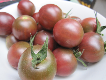 Black Cherry-Tomatoes-Vegetables-Full Circle Seeds