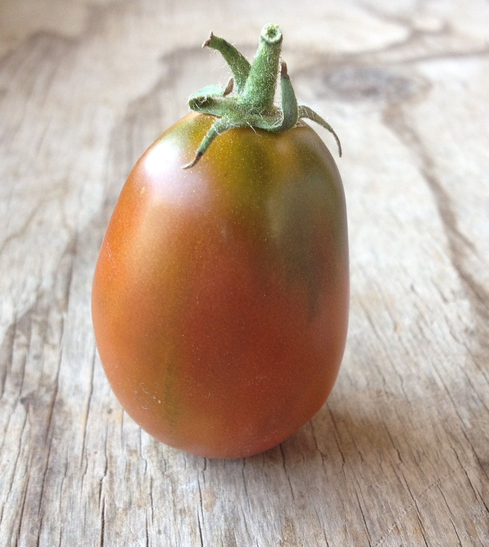 Black Plum-Tomatoes-Vegetables-Full Circle Seeds