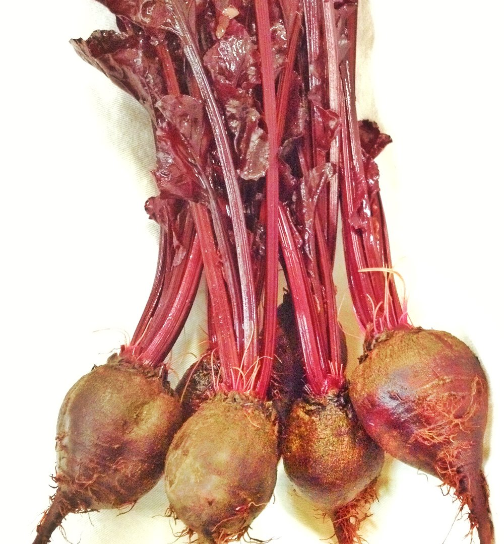 Bull's Blood Beets-Beets-Vegetables-Full Circle Seeds