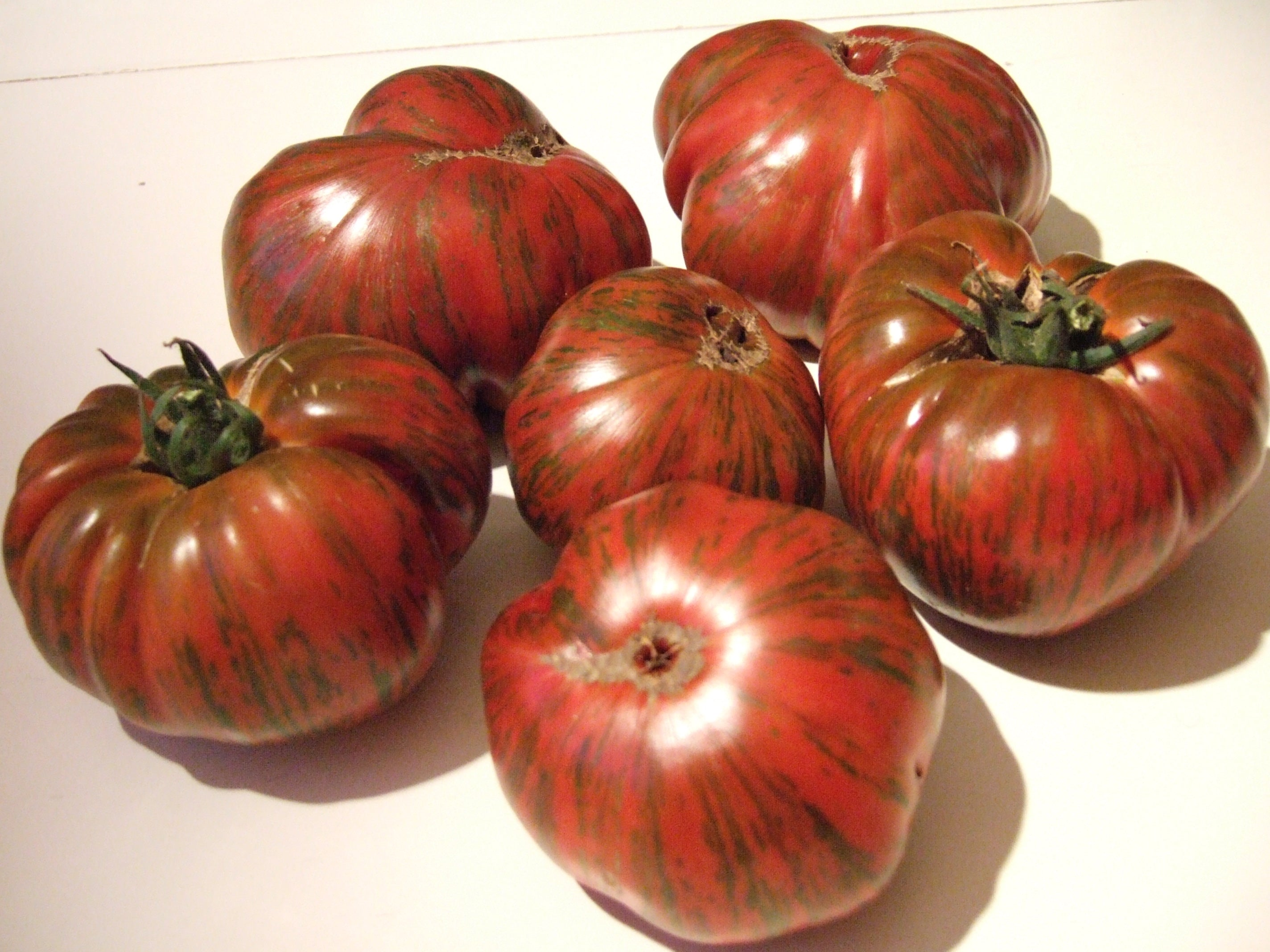 Chocolate Striped-Tomatoes-Vegetables-Full Circle Seeds