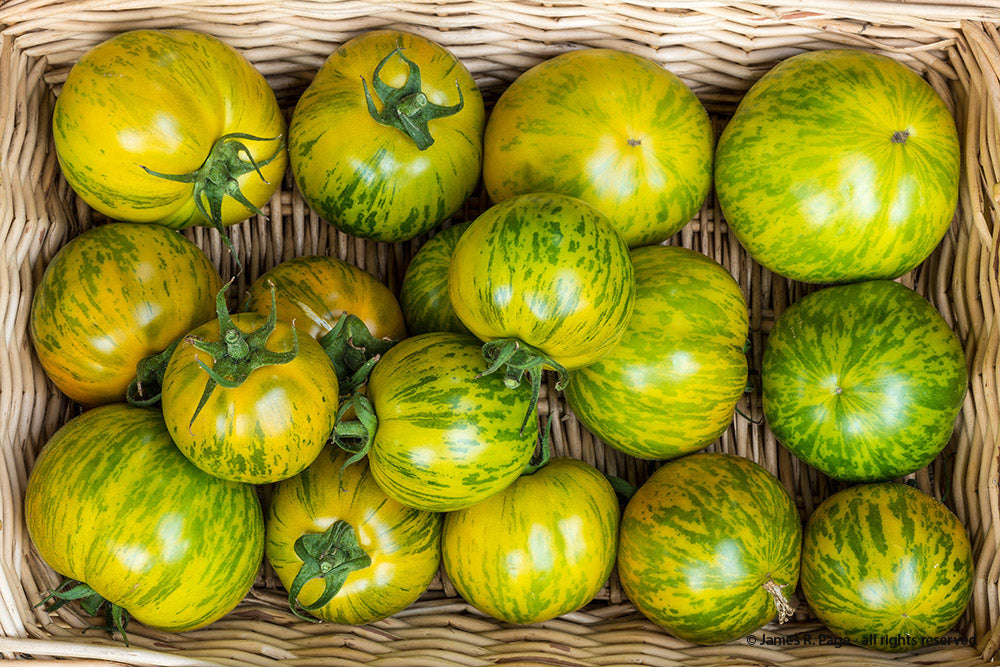 Green Zebra-Tomatoes-Vegetables-Full Circle Seeds