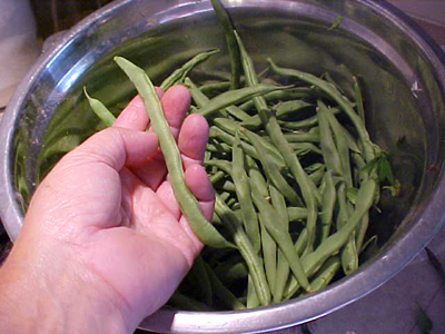 Lazy Housewife-Beans-Vegetables-Full Circle Seeds