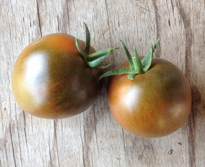 Nyagous-Tomatoes-Vegetables-Full Circle Seeds