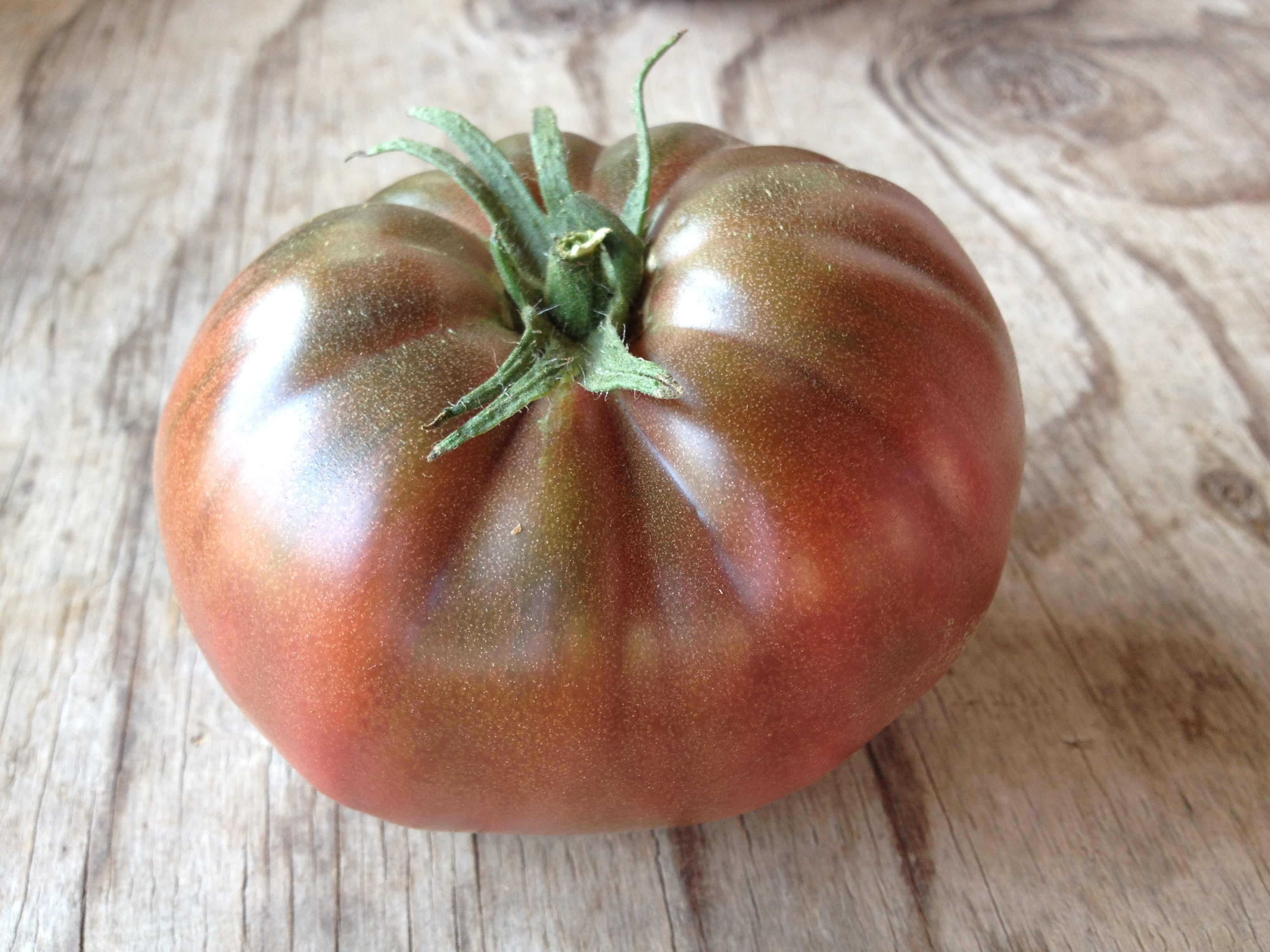 Paul Robeson Black-Tomatoes-Vegetables-Full Circle Seeds