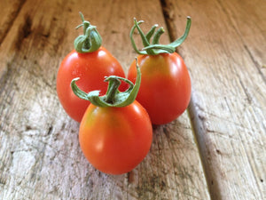 Principe Borghese-Tomatoes-Vegetables-Full Circle Seeds
