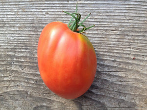 San Marzano-Tomatoes-Vegetables-Full Circle Seeds