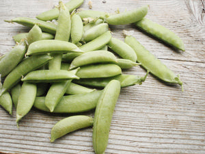 Sugar Snap -edible pod, pole-Peas-Vegetables-Full Circle Seeds