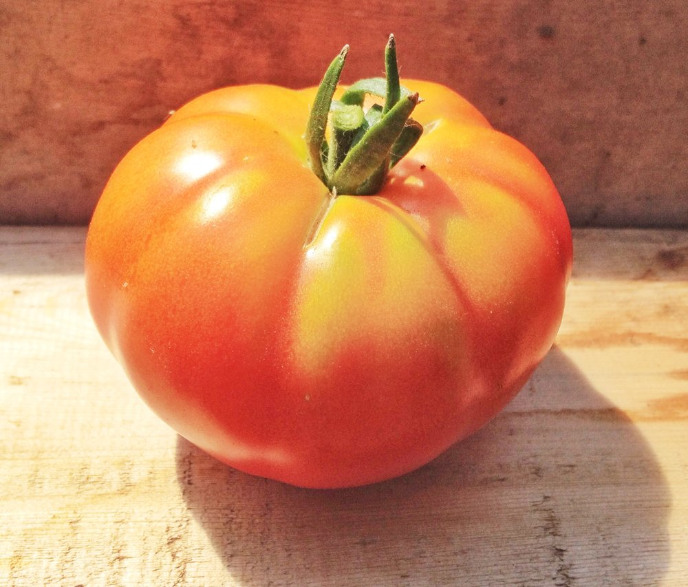 Super Marmande-Tomatoes-Vegetables-Full Circle Seeds