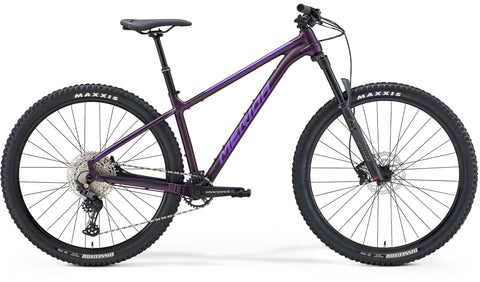 Big Trail 600 Purple