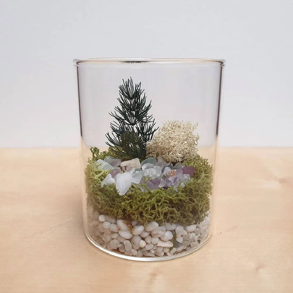 Crystal Collection DIY Terrarium Kit by Two Fish & me