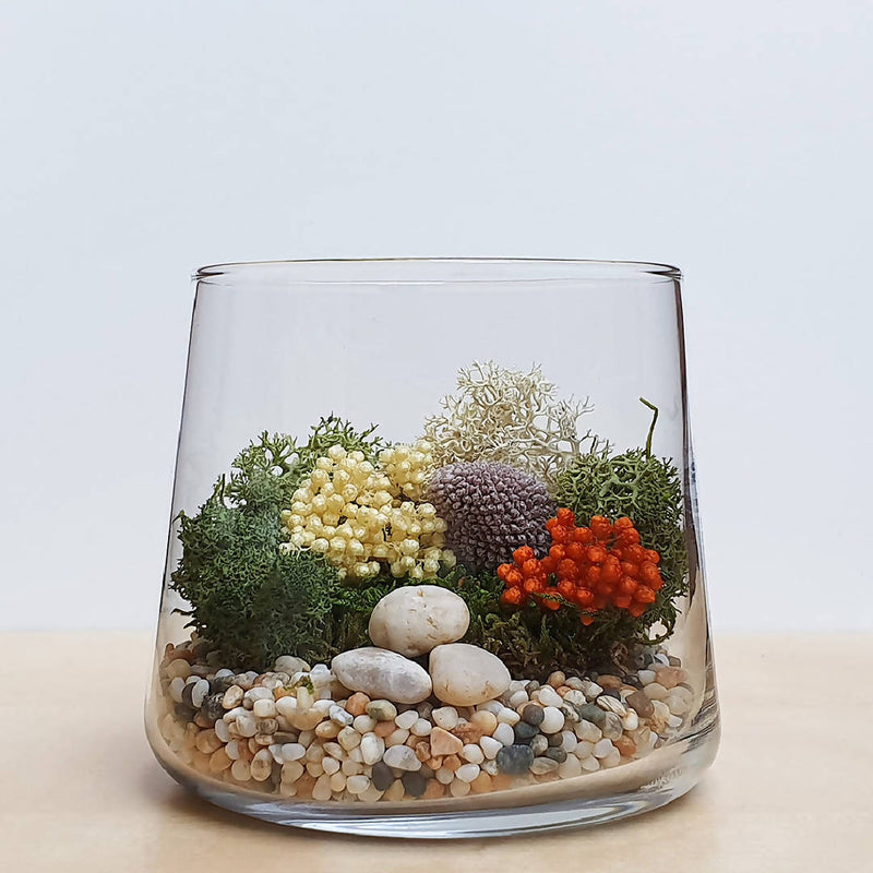 DIY Terrarium Kit - Autumn