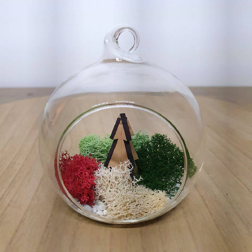 Christmas Terrarium DIY Kit - Dasher