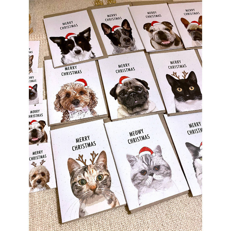 Pet Lover Pack of 12 Mixed Eco Friendly Recycled Paper Christmas Cards Plus Bonus 4 Christmas Gift Tags