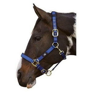 Horse Head Collar - Hy Deluxe Padded Head Collar - Navy - Pony