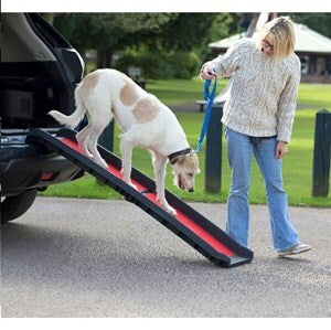 Henry Wag Pet Folding Ramp Lightweight - Single