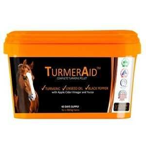 The Golden Paste Co TurmerAid  - 2 kg