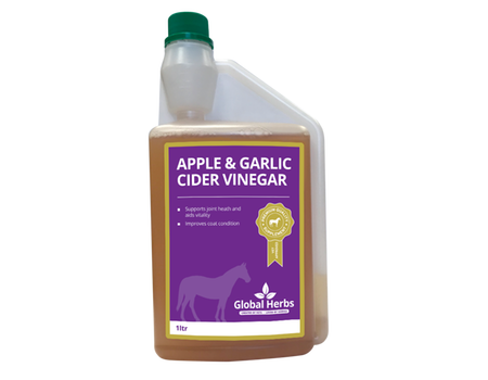Global H Apple & Garlic Cider Vinegar  - 1 L