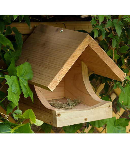 Blackbird Nest Box