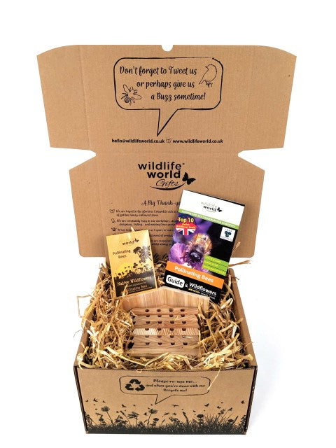 Bee Care Gift Pack (featuring Solitary Bee Hive)