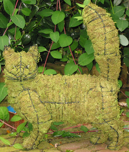 Topiary Cat walking