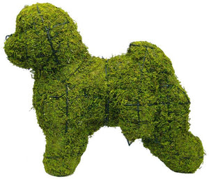Topiary Dog Bichon Frise